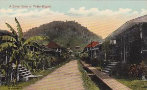 PEDRO MIGUEL, Panama, 1900-1910s; A Street View, Showing The Dainty Cottages ...
