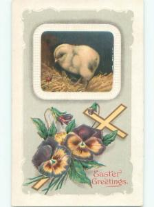 Divided-Back EASTER CHICK SCENE Cute Postcard AA0910