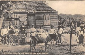 Barbados West Indies Post card Old Vintage Antique Postcard Typical House and...