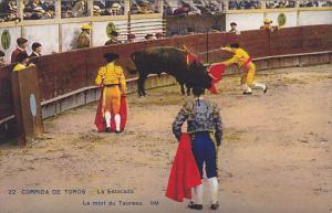 Bull Fight Corrida De Toros La Estocada