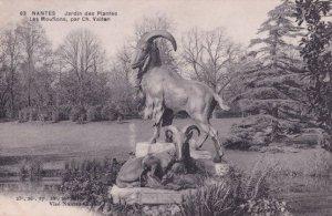 Nantes Jardin des Plantes Les Mouflons Par Charles Valton Postcard