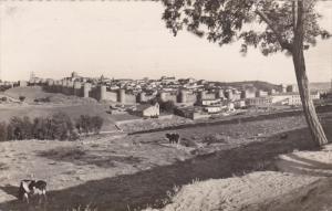 RP: Ávila , Spain , 40-50s ; Vista