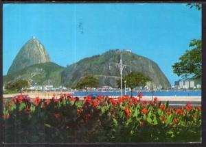 Botafogo Gardens,Rio de Janeiro,Brazil BIN