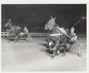 YONKERS Raceway Harness Horse Race , APACHE KING wins, 1980