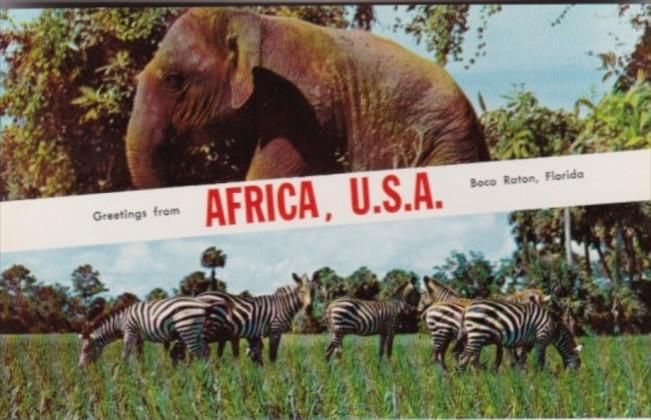 Alabama Boca Raton Greetings From Africa U S A With Elephant & Zebras