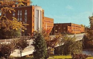 Frankenmuth Michigan Carling Brewing Co Street View Vintage Postcard K67293