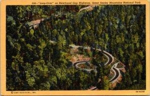 Newfound Gap Hwy Great Smokey Mountains National Park Postcard unused '30s/40s