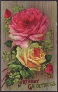 Birthday Greetings,Roses Postcard