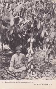 DAHOMEY - Un cocaoyer - F.N., 1910s