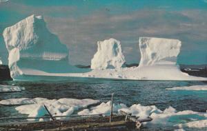 Iceberg , Twillingate , Notre Dame Bay , Newfoundland , Canada , PU-1971