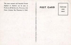 Podesta & Baldocchi, America's Most Famous Florists, Early Postcard, Unused