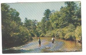 Trout Fishing on the pere marquette in Michigan, PU-40-60s