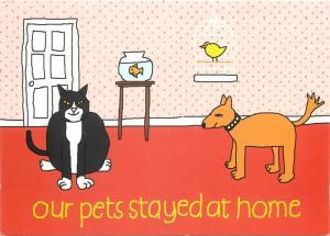 Aiken Graphics comic postcard pets