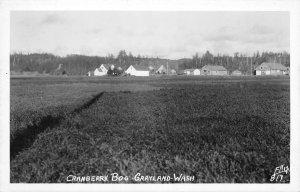 RPPC Cranberry Bog GRAYLAND, WA Grays Harbor Ellis Photo c1940s Vintage Postcard
