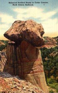 North Dakota Badlands Cedar Canyon Balanced Petrified Stump