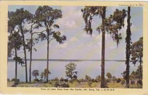 Florida Mount Dora View Of Lake Dora From The Castle 1949 Dexter Press