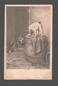 080510 Hungry JACK RUSSELL TERRIER & KITTEN by HILL vintage PC