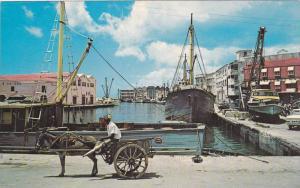 Picturesque donkey carts, Bridgetown, Careenage (Old Docks), Barbados, West I...