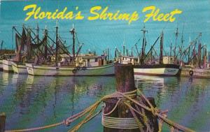 Florida The Shrimp Fleet 1969