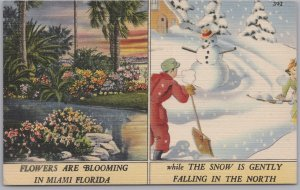 Miami, FLA., Flowers are blooming in Miami, Snowing in the North-1944