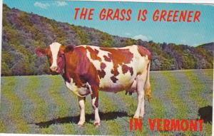 Vermont The Grass Is Greener 1968