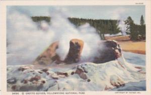 Grotto Geyser Yellowstone National Park Curteich