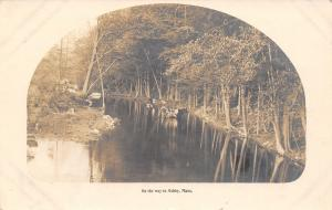 On the Way to Ashby Massachusetts~Cows in Brook~Trees Reflect~c1913 RPPC