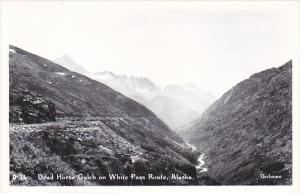 Alaska Dead Horse Gulch In White Pass Route Real Photo