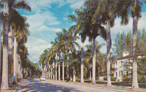 Florida Fort Myers Royal Palms At Fort Myers