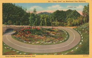 Postcard Loop Over Newfound Gap Highway