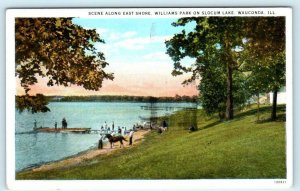 WAUCONDA, Illinois IL ~ Williams Park SLOCUM LAKE East Shore ca 1920s  Postcard