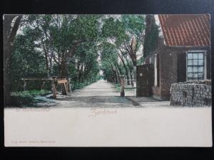 Netherlands: ZANDVOORT Tot Haarlemmerstraat - Old Postcard