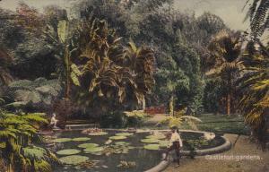 JAMAICA, PU-1912; Castleton Gardens