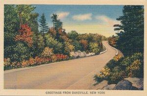 Greetings from Dansville Livingston County NY New York Rural Road Scene pm 1941