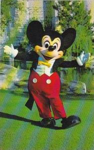 Florida Walt Disney World Welcome Mickey Mouse Has Been The Symbol Of Disney ...