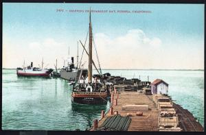 California ~ Shipping on Humboldt Bay EUREKA Divided Back