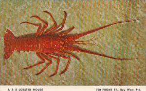 A & B Lobster House Key West Florida