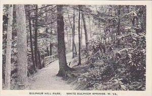 West Virginia White Sulphur Springs Silphur Hill Park Albertype