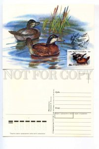 414551 USSR 1991 year set of FDC postcards maximum cards Kozlov duck hunting