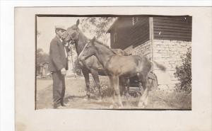 Man With Horses early 1900s Real Photo