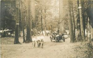 1912 Cascadia Linn Oregon Camping Auto License plate #3906 RPPC Photo Postcard