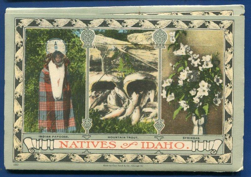 Beautiful Idaho the Gem State Old Oregon Trail Payette Lake Postcard Folder