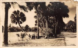 New Port Richey FL Old US Highway 19 Along the Cotee River RPPC 1940s