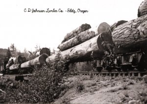 OR - Siletz. C.D. Johnson Lumber Co. Train, Early 1900's (5.75 X 4 Photo Re...