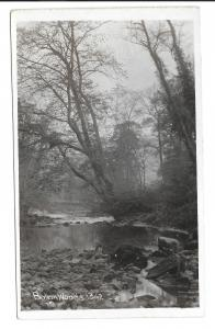 Bolton Woods  RP PPC, Unposted, North Yorkshire Showing the Strid, Strid Woods