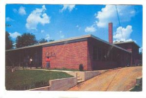 Blue Triangle Branch, Y. M. C. A., Nashville, Tennessee, 50-70