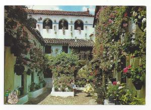 Spain Andalusia Garden Patio Vintage Postcard 4X6
