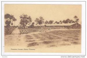 Plantation d'ananas.(Guinee Francaise), 00-10s