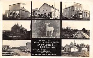 Cook Minnesota~OJ Leding General Store~Railroad Depot~Creamery~Hotel~1915 RPPC