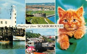 Vintage 1974 Postcard, Scarborough, Multi View, Kitten, Lighthouse, Harbour 15T